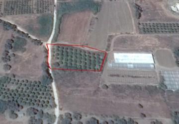 Residential Land  For Sale  in  Agia Marina Chrysochous