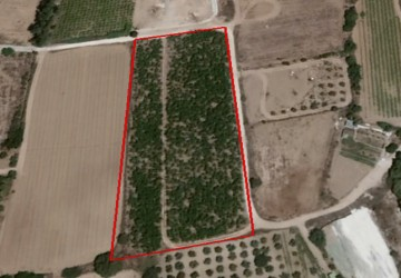 Residential Land  in Chlorakas, Paphos