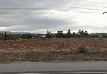 Agricultural Land For Sale  in  Chlorakas
